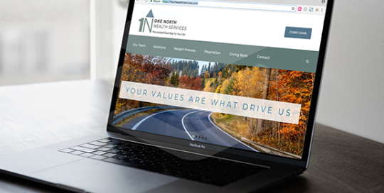 1North Wealth Website Design